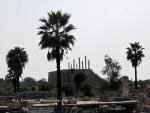 Tyr, vue de l'hippodrome